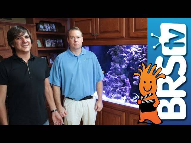 BRStv Visits Aquarium Artisans | Reefer Profile