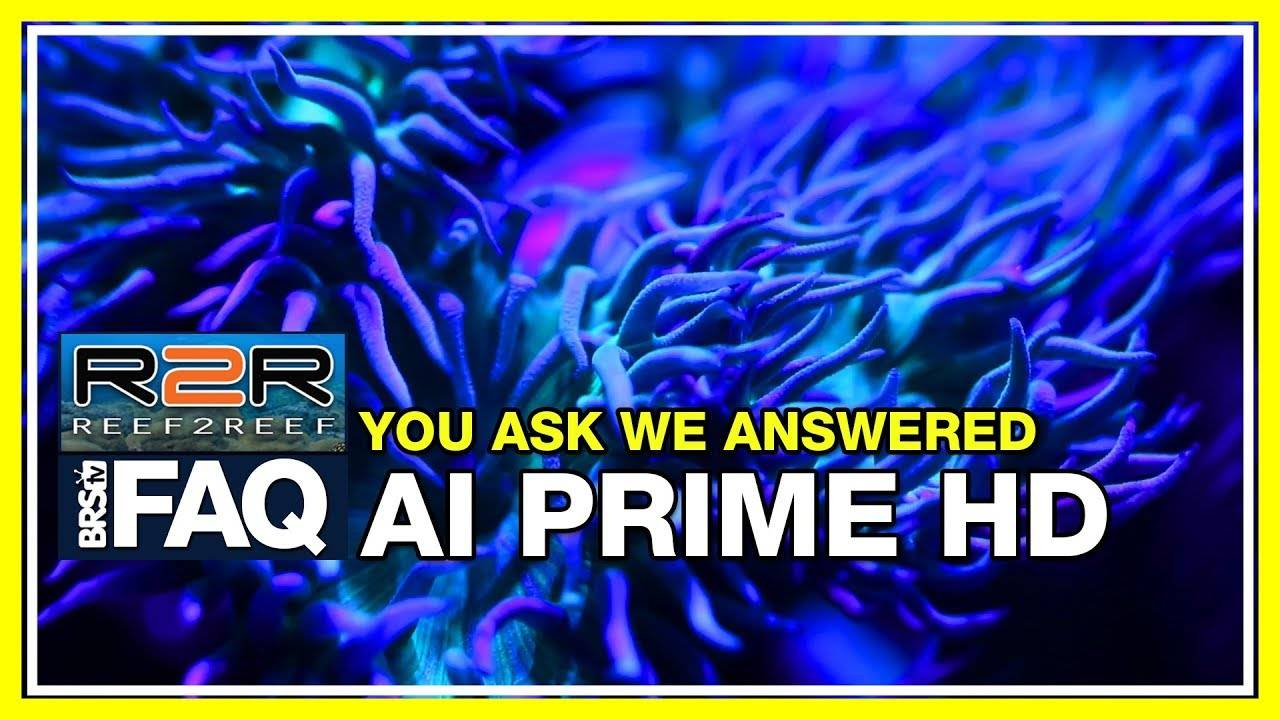 R2R FAQ: Does overdriving the AquaIllumination Prime HD LEDs affect long-term operation?