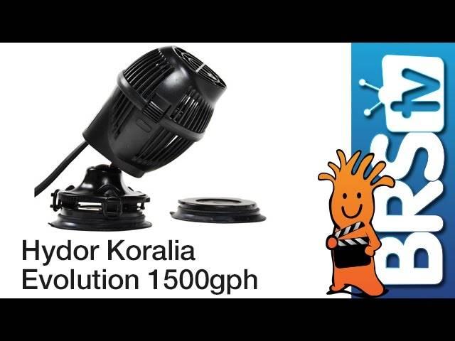 Hydor Koralia Evolution 1500GPH Flow Dynamics