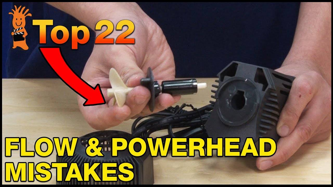 How to avoid these Flow and Powerhead Mistakes in your tank. New year, new lessons!