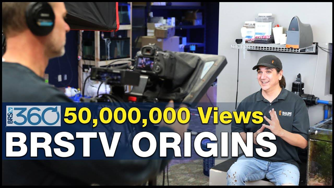 Ep.3 - The roots of BRSTV?  One failure, three successes and some well-timed reefing tips. | BRS360