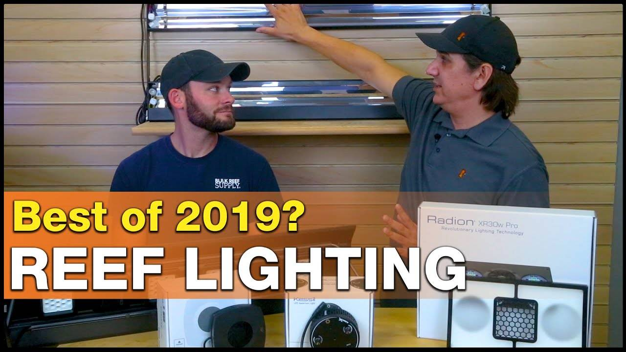 Stop the reef tank lighting confusion! THESE are our Best Saltwater Aquarium Lights for 2019!