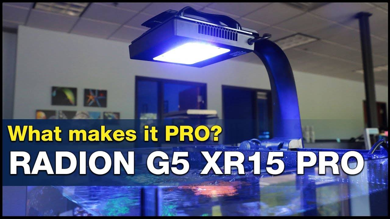 This is what it means to go PRO! How to Master your tank lighting using Radion G5 XR15 Pro's!