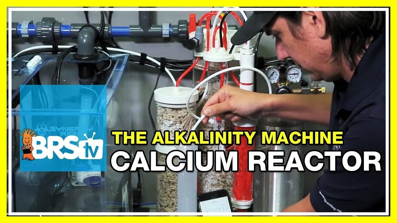 Week 32: Calcium reactor on the BRS160? You decide! | 52 Weeks of Reefing #BRS160