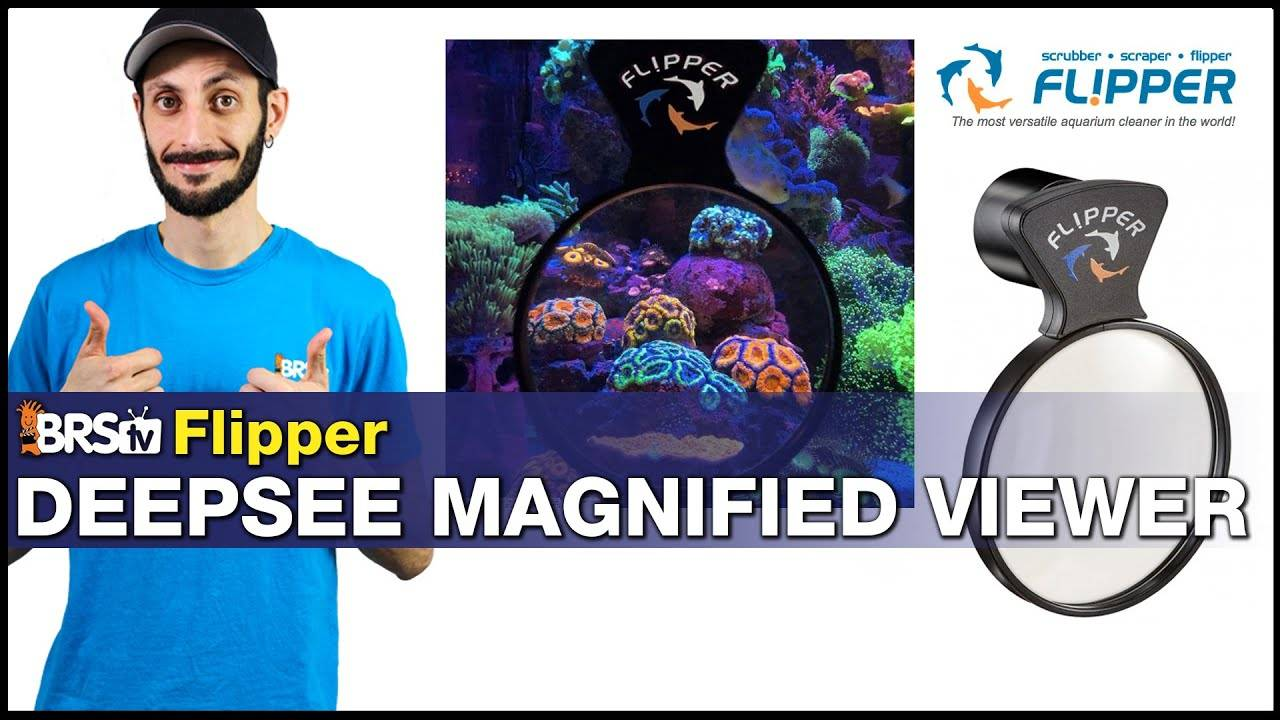 Flipper DeepSee Magnified Viewer: See Your Fish & Corals In a Whole New Way ...Magnified!