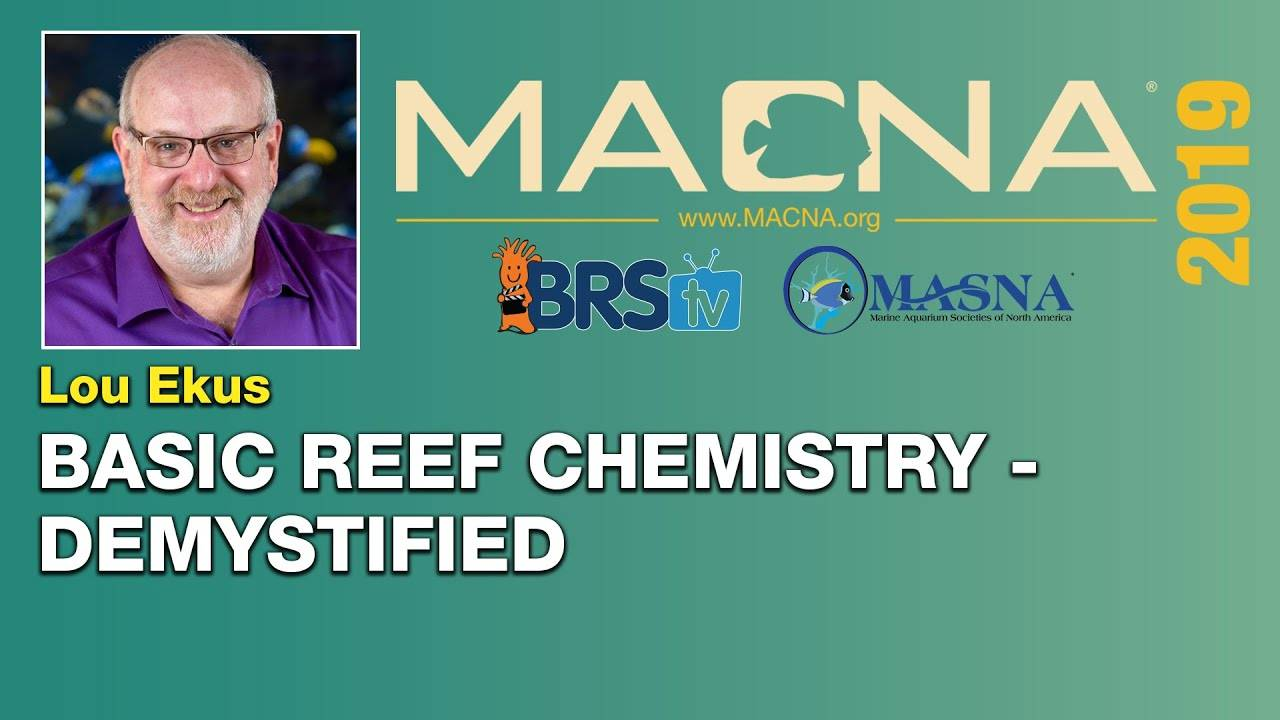 Lou Ekus: Reef aquarium chemistry can be pretty easy and fun...No, really! | MACNA 2019