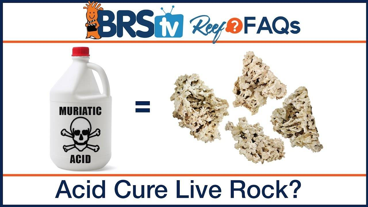 How to cure live rock with acid for a saltwater aquarium - Reef FAQs