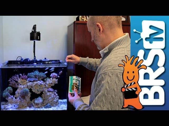 Hikari Premium Fish Foods - BRStv Product Spotlight