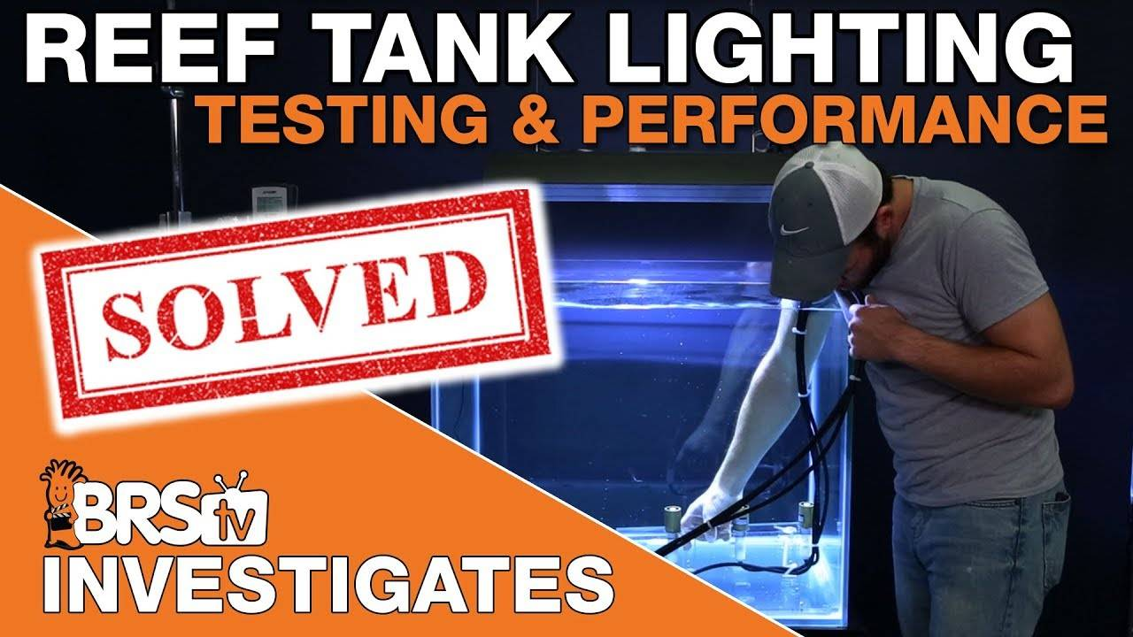 BRStv Investigates: Changing everything we know about reef tank lighting!