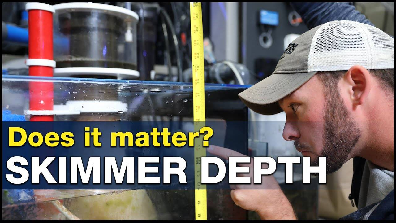BRStv Investigates - Does the water level in my sump really affect my protein skimmer?