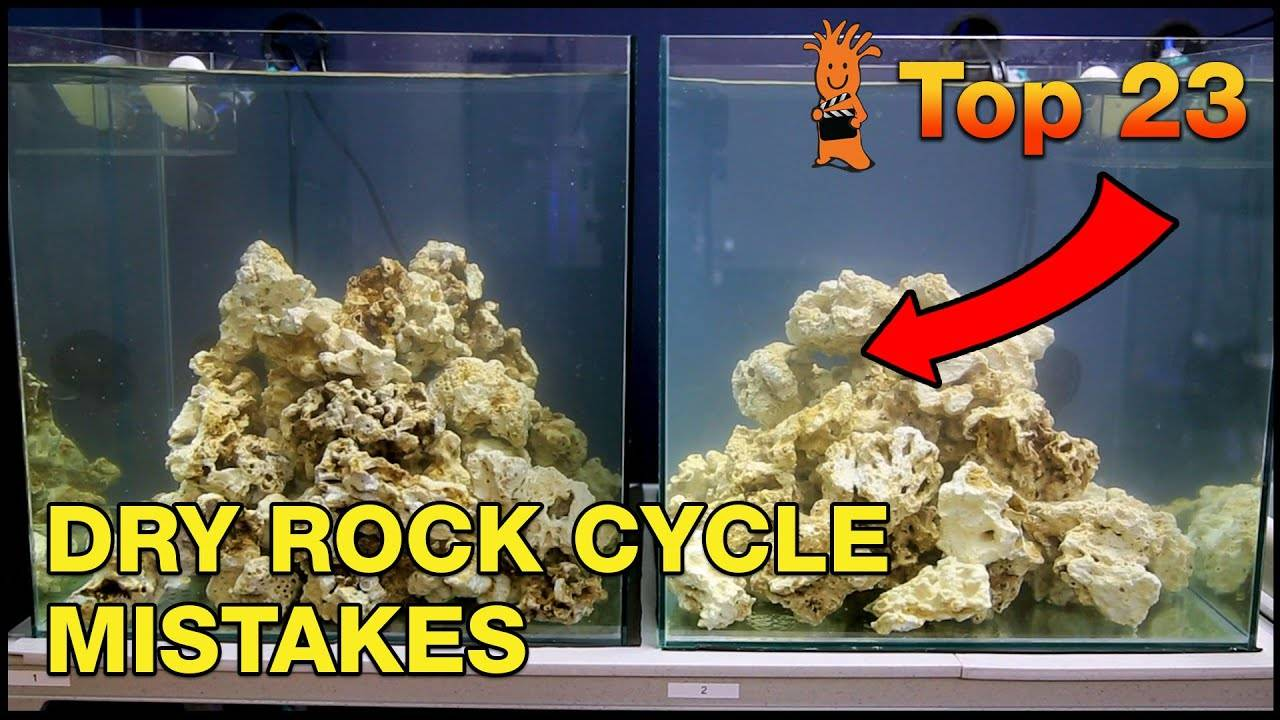 Top 23 Cycling Mistakes Using Dry Rock