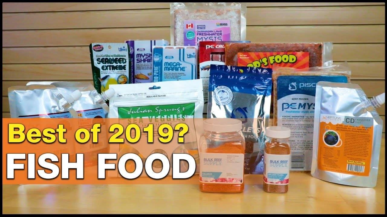 Best of 2019   Foods