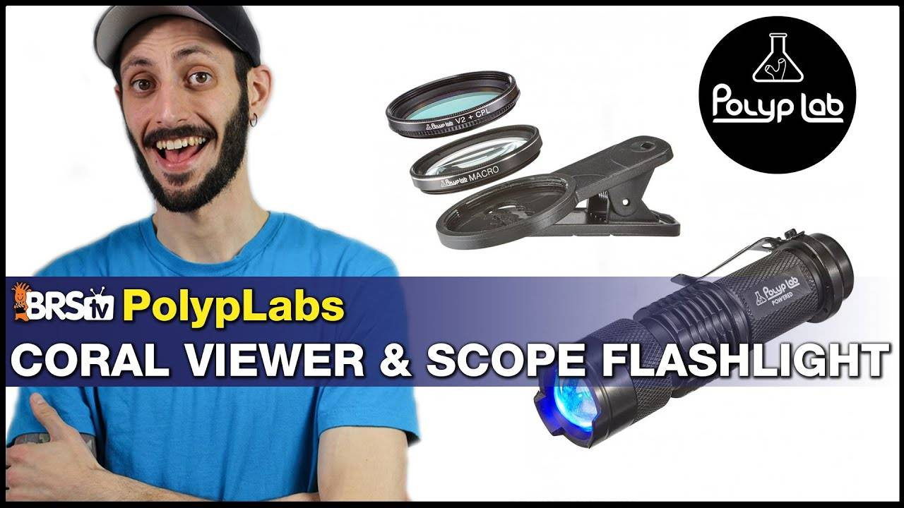 BRStv Product Spotlight - PolypLab Coral Viewer & Scope LED flashlight.