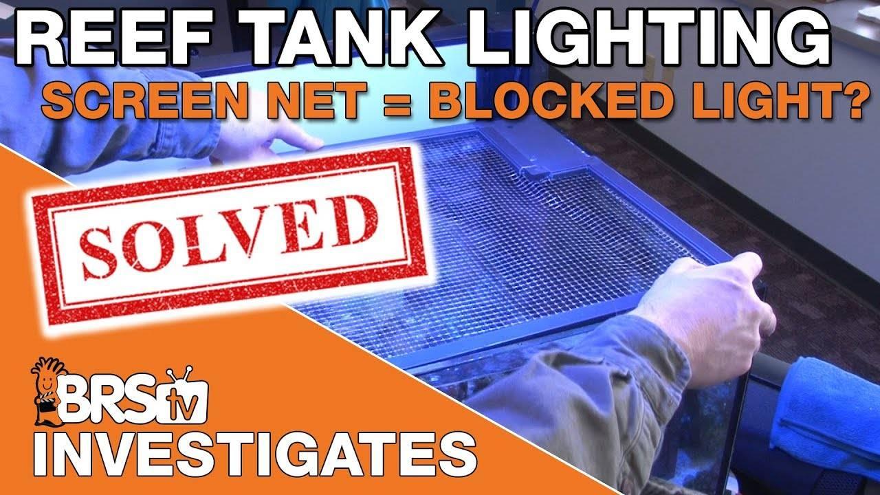 BRStv Investigates: How much light do screen net tops block?