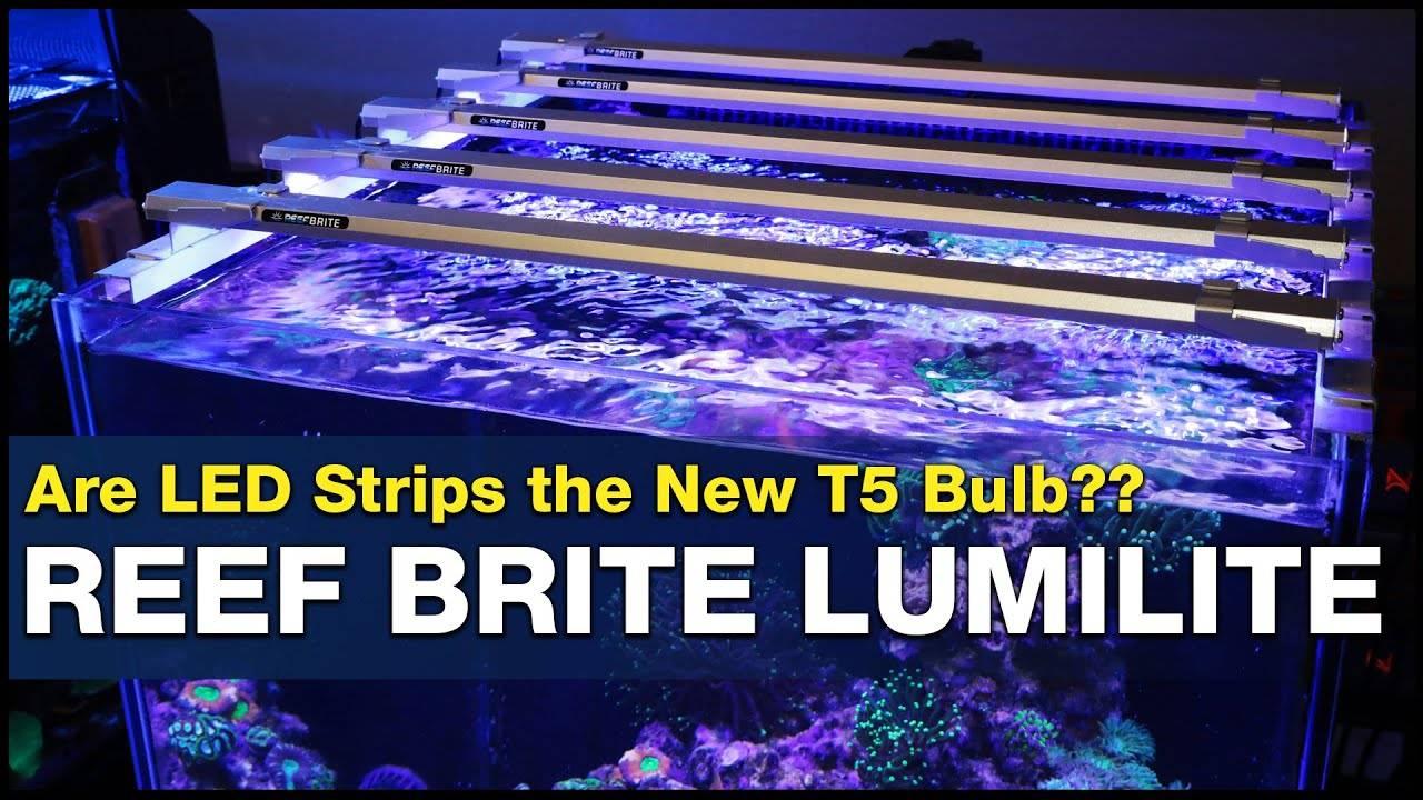 BRStv Investigates - Reef Brite Lumi Lite LED vs T5