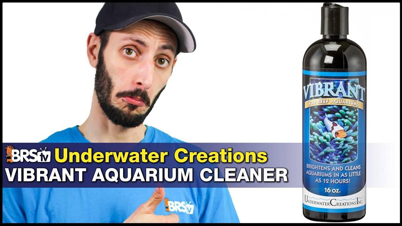 Vibrant Aquarium Cleaner (Underwater Creations): Harness bacteria to solve reef tank algae problems!