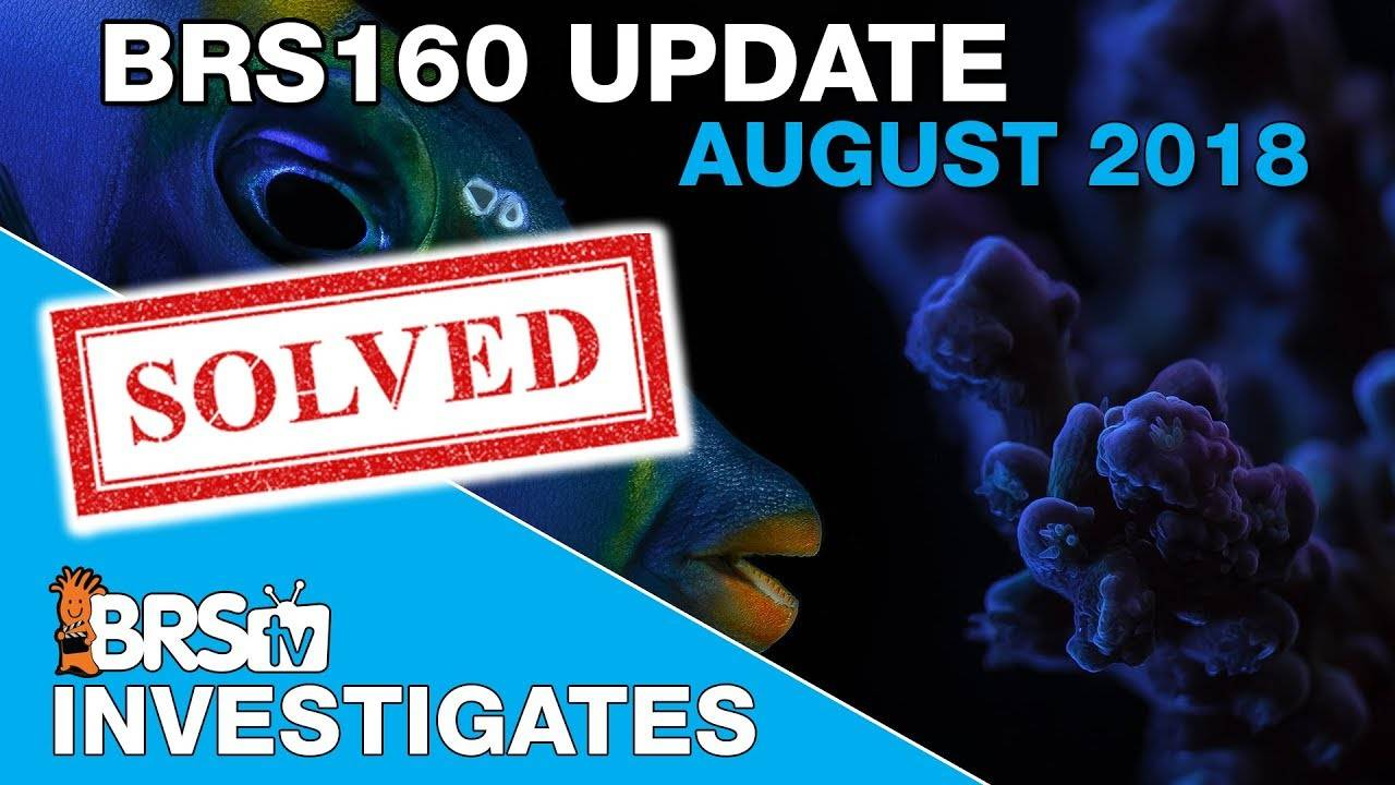 BRS160 Update August 2018: Successes, issues and auto water changes. | BRStv