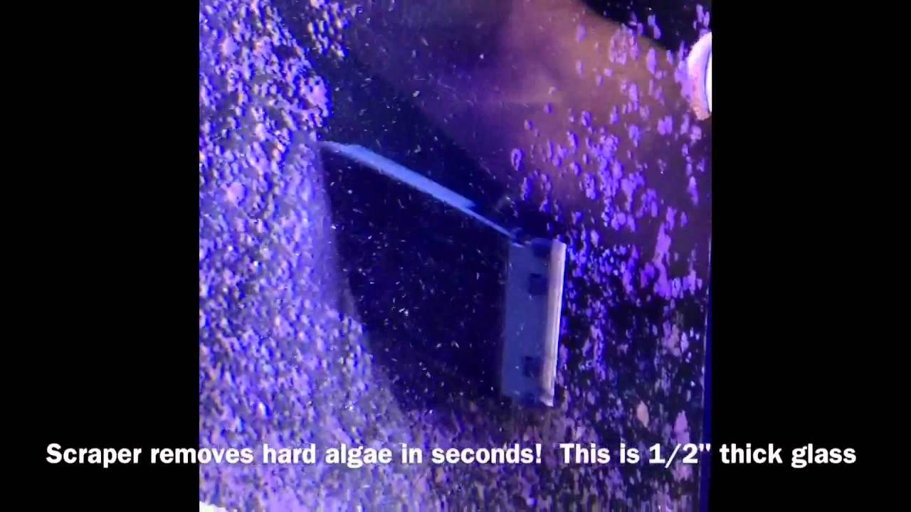 How to: Flipper Magnetic Cleaner