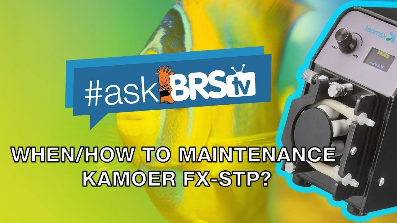How and when to replace FX STP tubing and pump head - #AskBRStv
