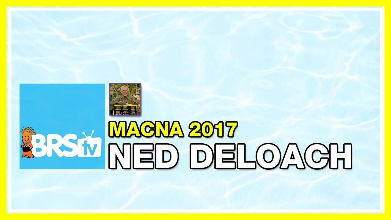 Ned Deloach: Dream Fish | MACNA Speakers 2017