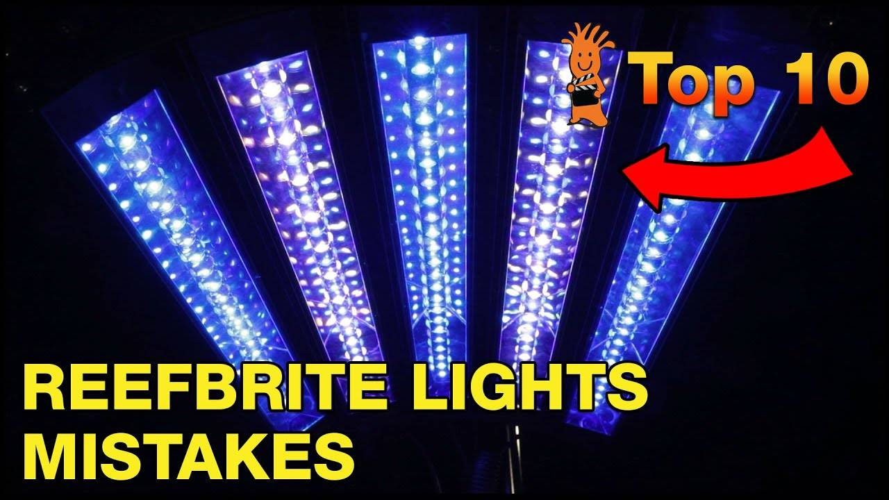 Top Mistake Reef Brite LED Strip Lights