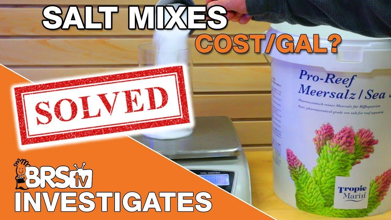 How much does your salt mix REALLY cost? - BRStv Investigates