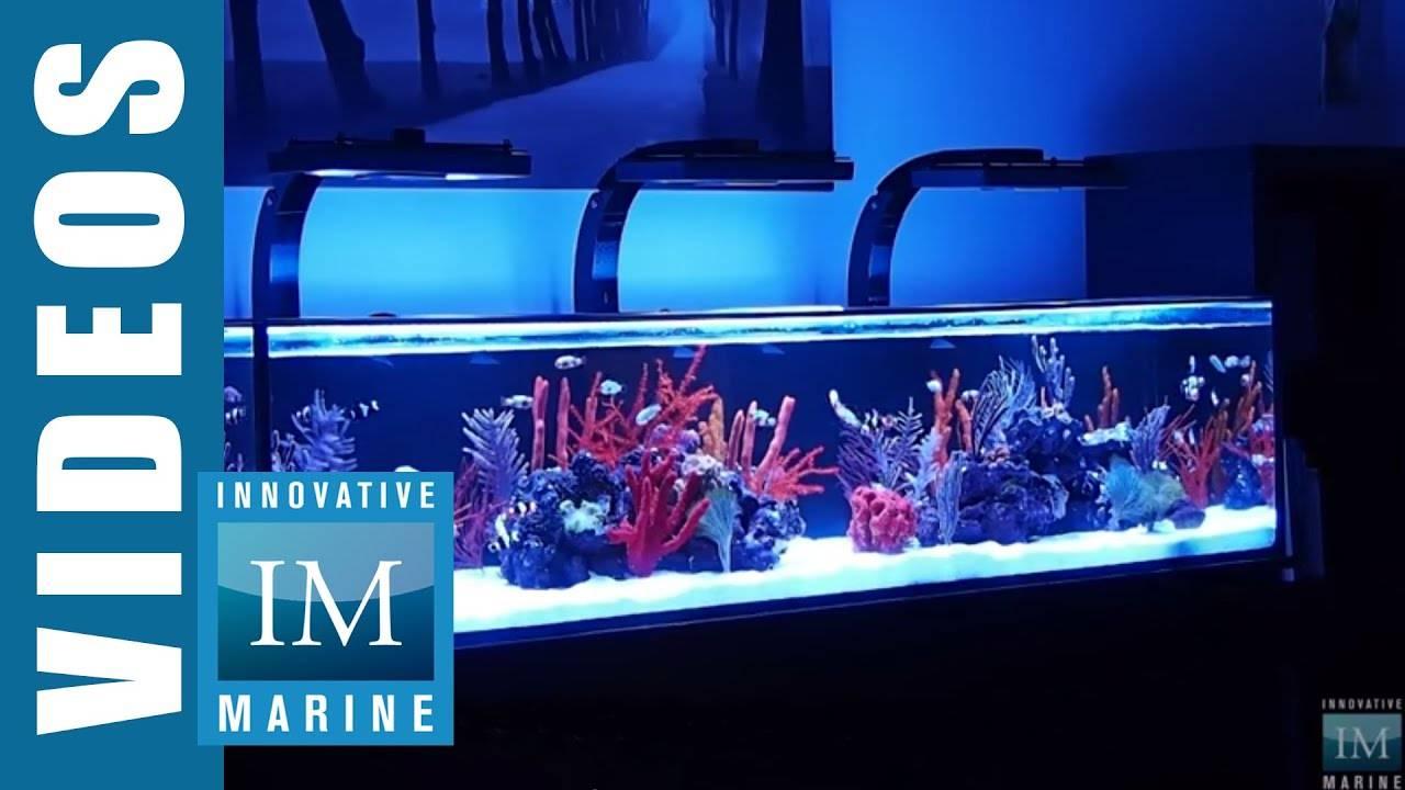 IM Nuvo Aquarium 60, 80 & 120