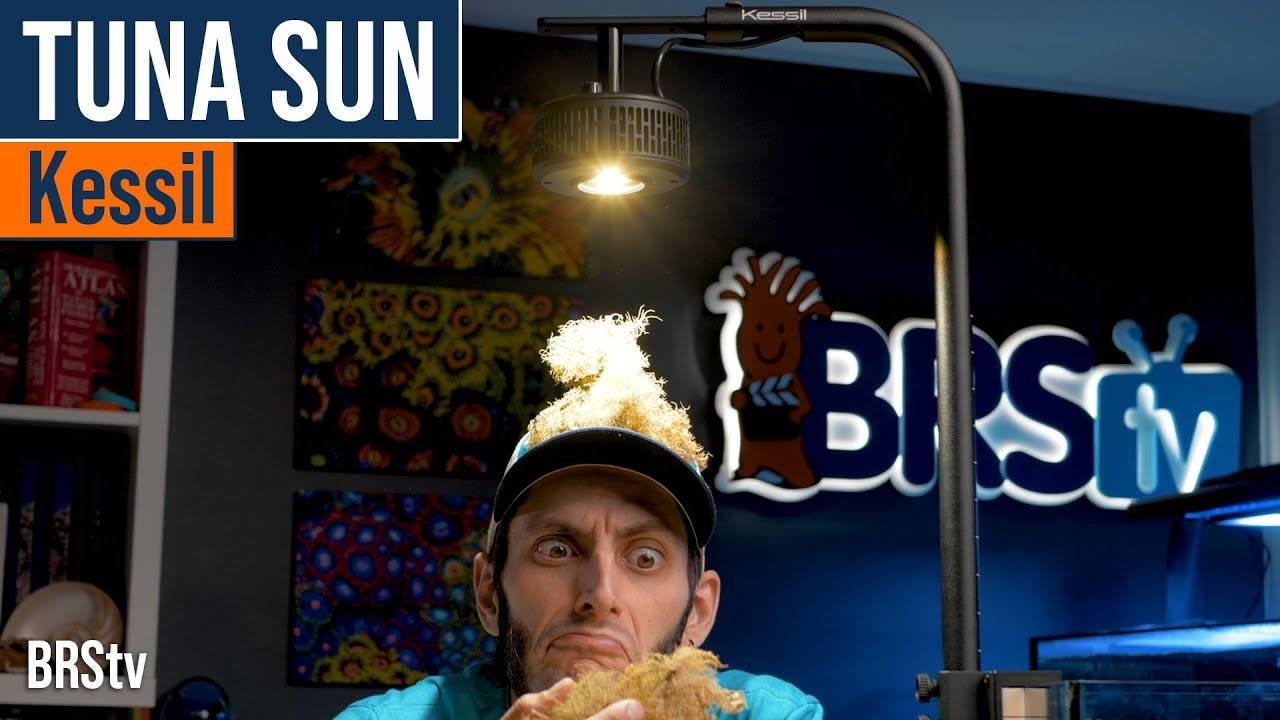 BRStv Product Spotlight-Kessil A360X Tuna Sun LED Light
