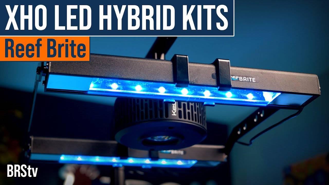 Watch Video - BRStv Product Spotlight Reef Brite XHO LED Hybrid Light Fixture