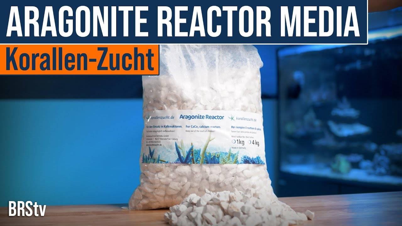 Watch Video - BRStv Product Spotlight Korallen Zucht Aragonite Calcium Reactor Media