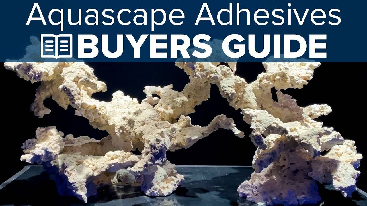 Watch Video - BRStv Buyers Guide To Aquascaping Adhesives