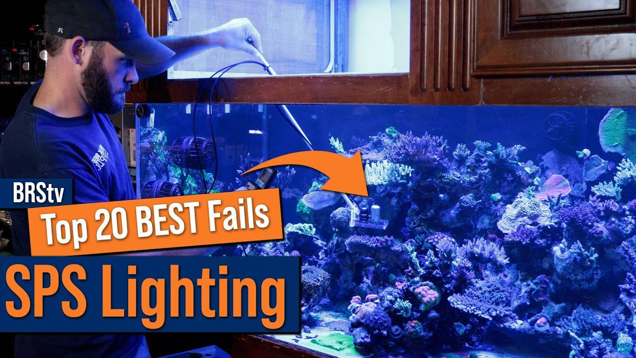 Watch Video - Top 20 SPS Dominated Reef Tank Lighting Mistakes