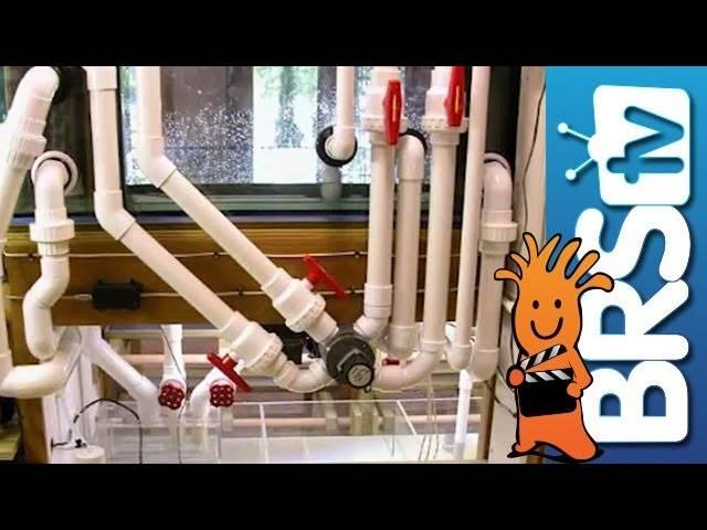 Saltwater Basics - Pumps, Plumbing & Electrical