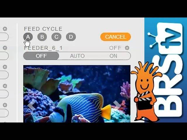 How To Set-up Feed Mode in Fusion EP 19: Apex Aquarium Controllers from Neptune Systems