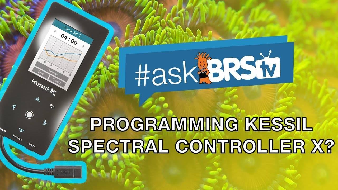 Show me how to program the Kessil Spectral Controller X? - #AskBRStv