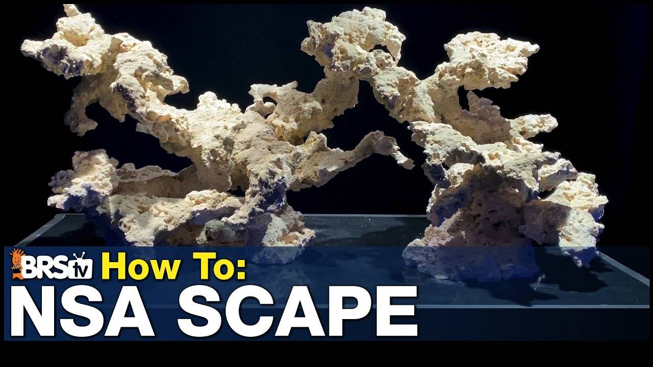 How To Build An NSA using Marco Rock Reef Saver Dry Rock
