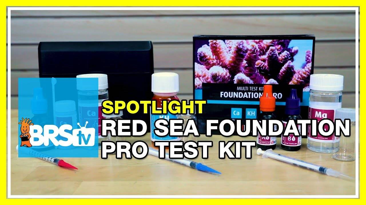 Testing your reef with the Red Sea Foundation Pro Test Kit - BRStv