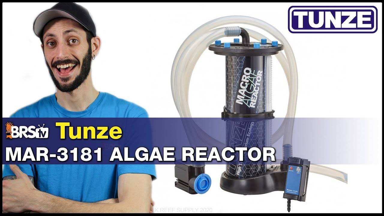 Tunze MAR-3181 Macro Algae Reactor : Grow algae inside or outside your sump...Easy!