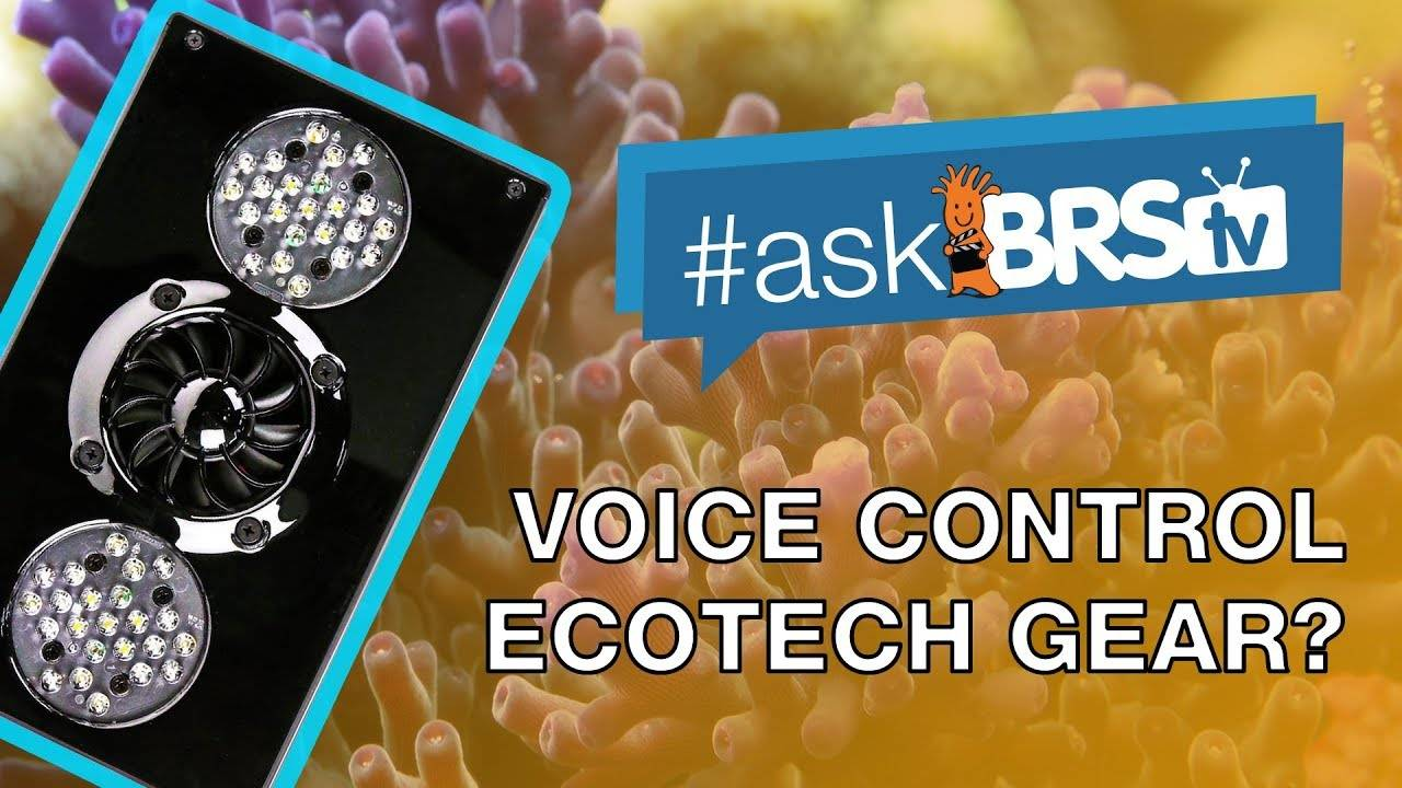 Can I turn my EcoTech Radions on/off with Alexa?  - #AskBRStv
