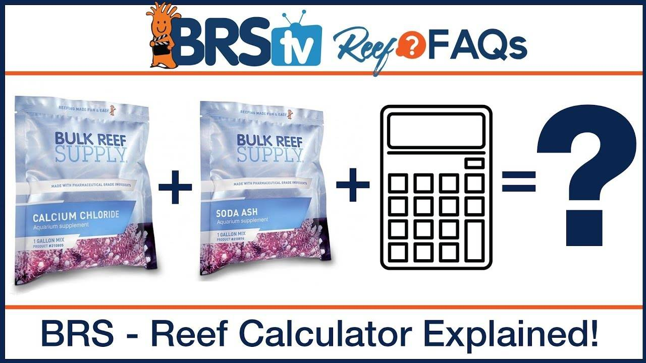 How much 2 part do you dose? Reef calculator made EASY! - BRStv ReefFAQs