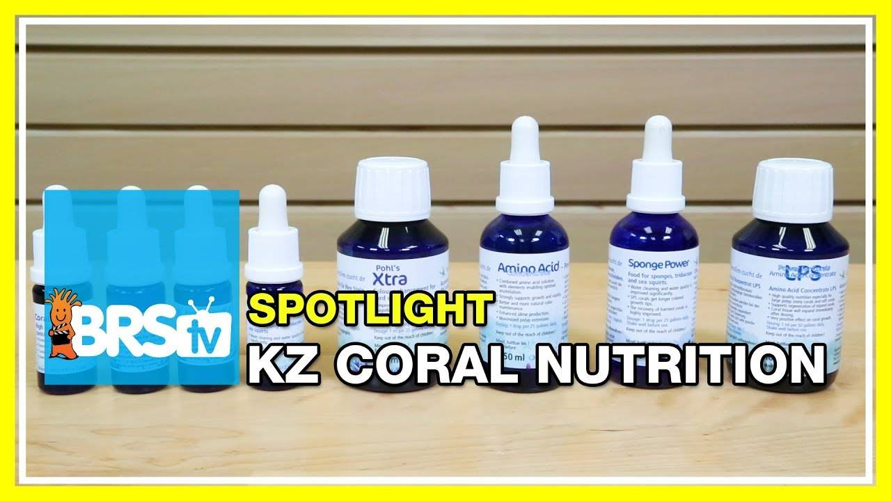 Spotlight on KZ Coral Nutrition Supplements - BRStv