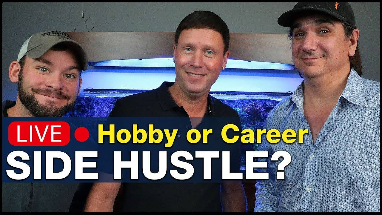 Ep.3.1 - Talking reef tank side hustles with Jeff Jacobson. How a hobby becomes a career! | BRS360