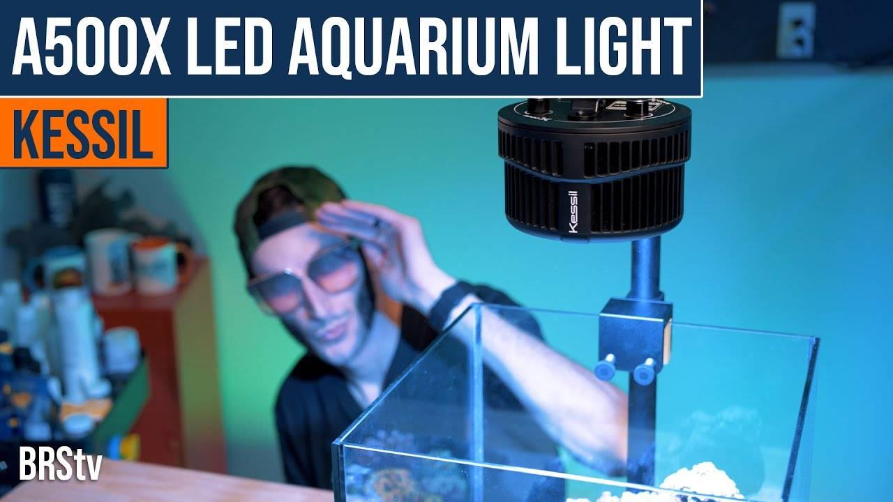 BRStv Product Spotlight - Kessil A500X LED Light