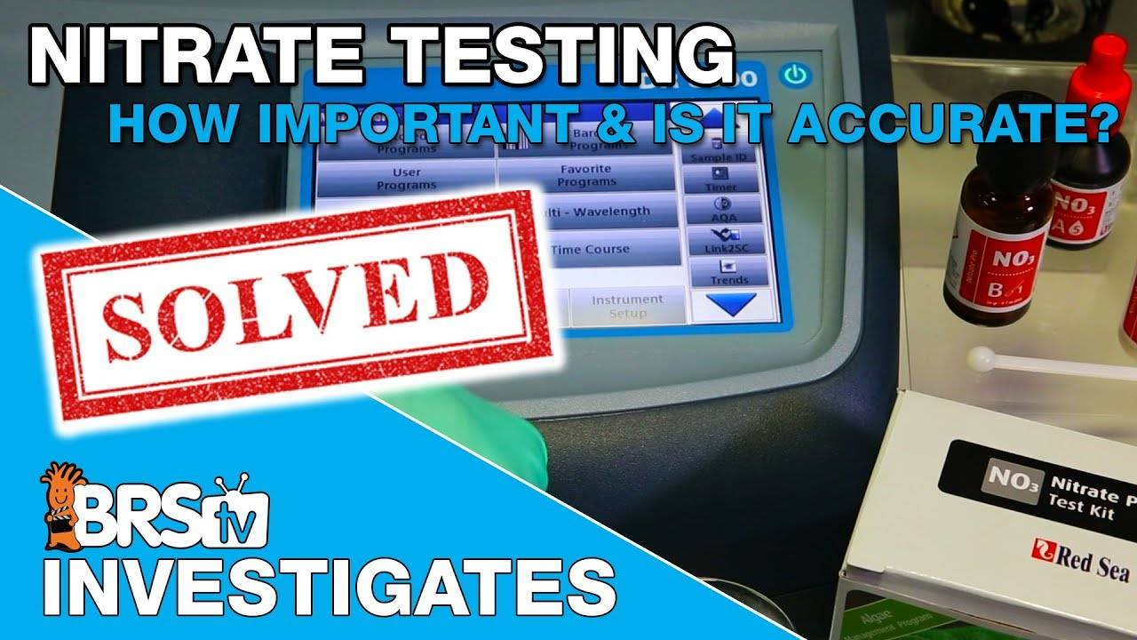 BRStv Investigates: How accurate are nitrate test kits and why does it matter?