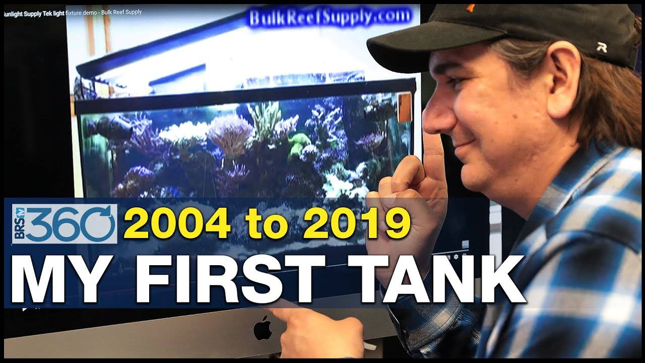 Ep.2 - My personal reefing journey and challenges.   BRS360
