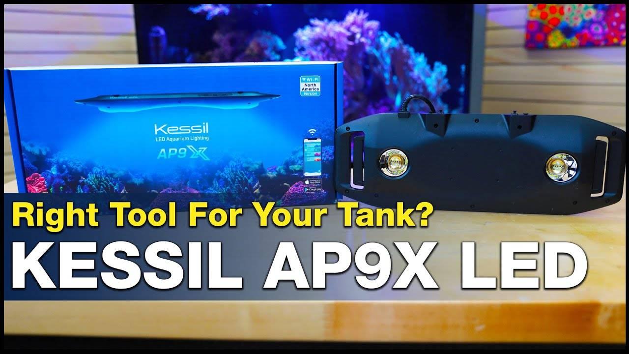 BRStv Investigates - Kessil AP9X LED Light