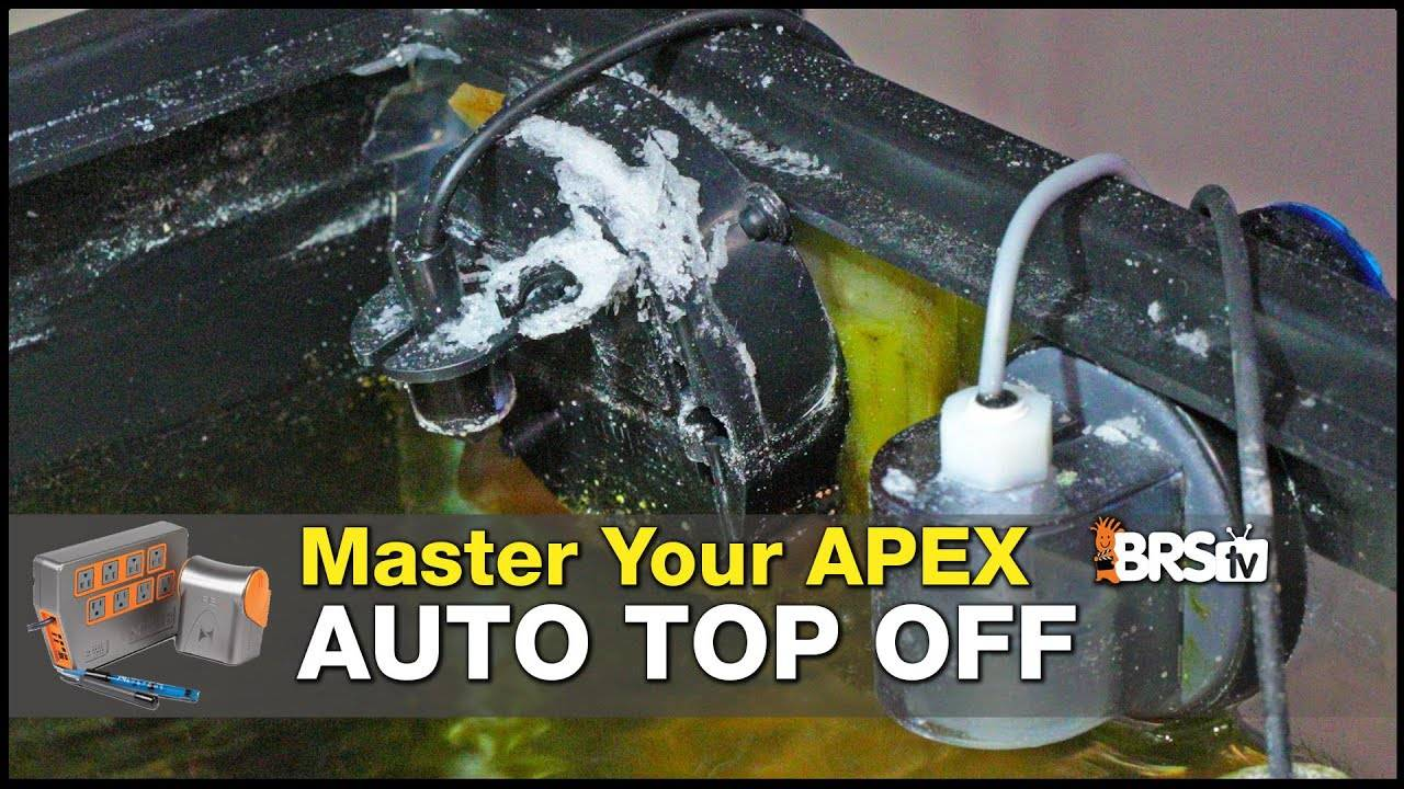 Master Your Apex Auto Top Off