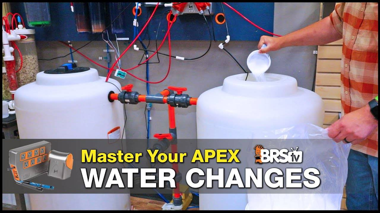 Master Your Neptune Systems Apex Auto Water Changes