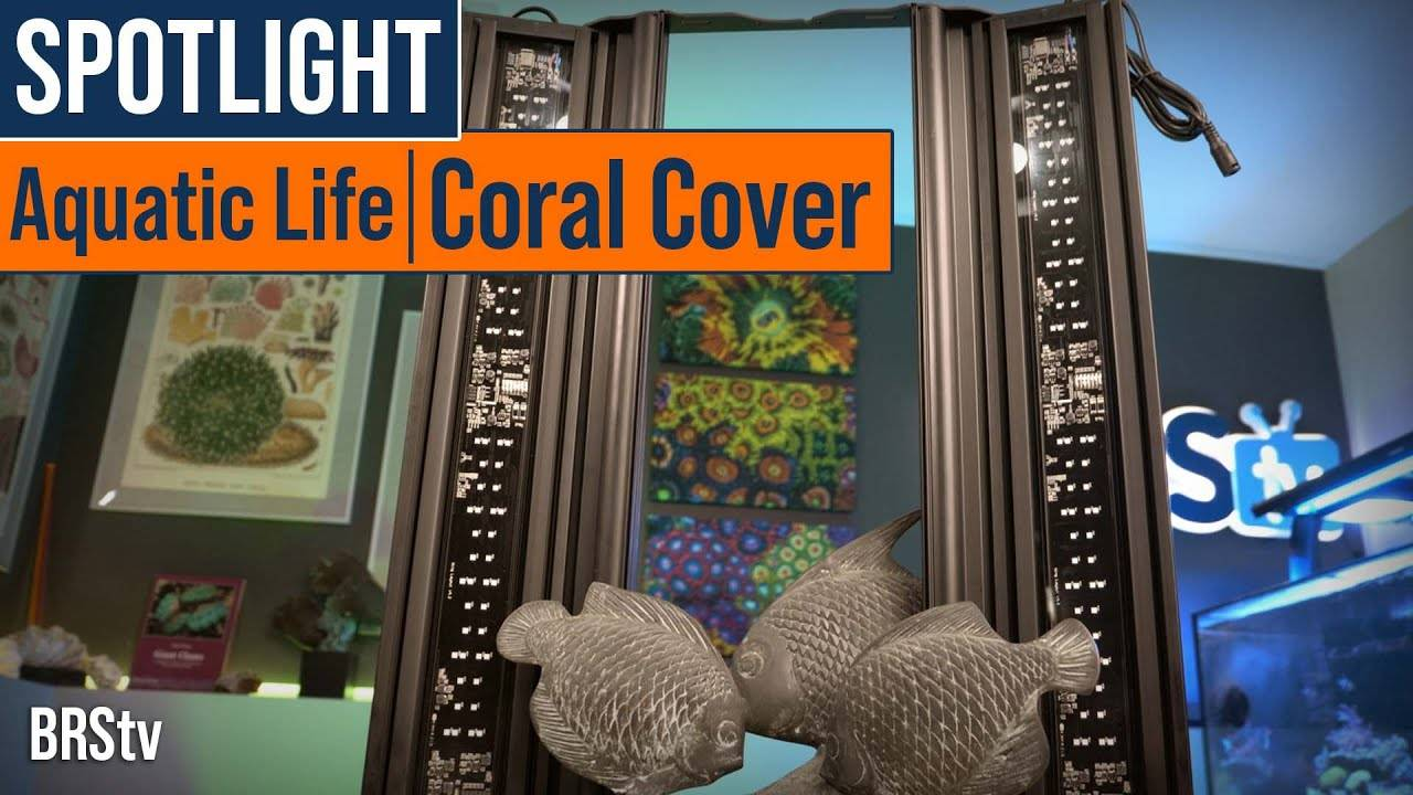 BRStv Product Spotlight - Aquatic Life Coral Cover LED Hybrid Light