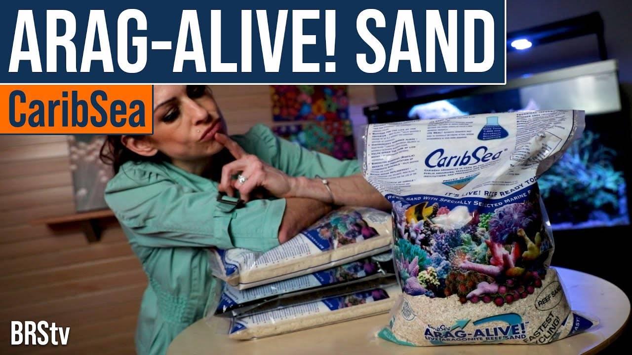 BRStv Product Spotlight - CaribSea Arag-Alive Special Grade Reef Sand